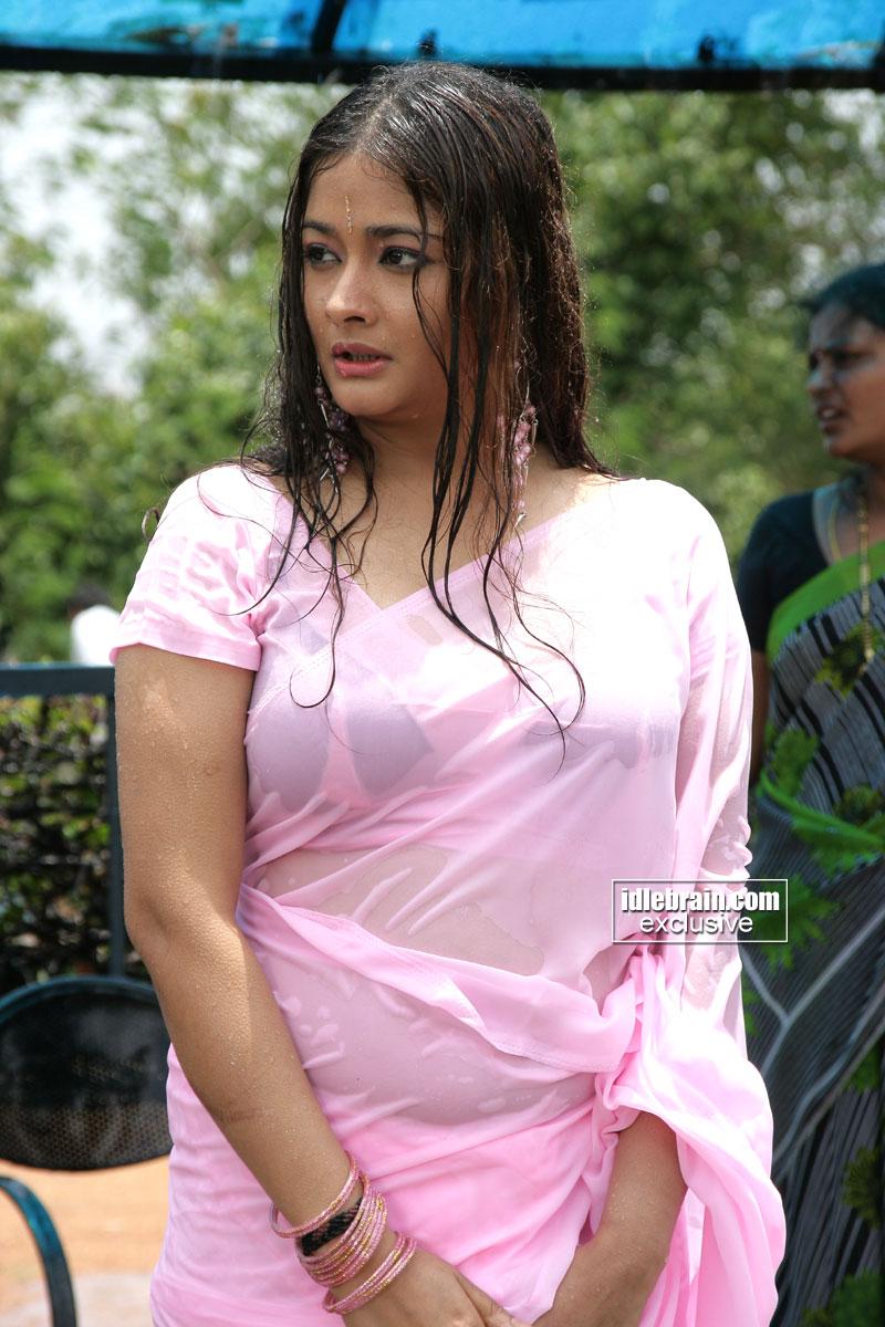 saree Wet in nude